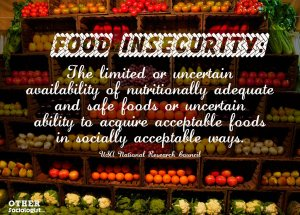 food-insecurity-the-other-sociologist